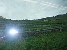 02dscf4232